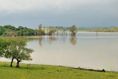 Landscape in cadiz. Reservoir in a natural park located in Cadiz,  Spain Royalty Free Stock Photo