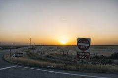 Landscape in California Stock Photos
