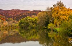 Landscape with calm river in autumn. Beautiful mountainous scenery with red and yellow foliage Stock Photography