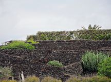 Landscape Caloura, Agua de Pau. Parish, Lagoa. Sao Miguel Island, Azores, Portugal Royalty Free Stock Photos