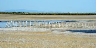 Landscape at Camargue Royalty Free Stock Photos