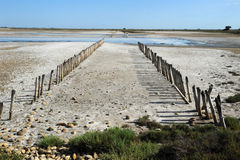 Landscape at Camargue Royalty Free Stock Images