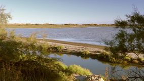 Landscape of camargue stock video footage
