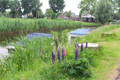 Rural Dutch landscape with canal, boats and farms, Netherlands Royalty Free Stock Photography