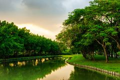Landscape of canal are city park with forest wall. And standing timber royalty free stock photography