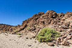 Landscape on the canarian island Tenerife Royalty Free Stock Photography