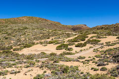 Landscape on the canarian island Tenerife Stock Photography