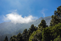 Landscape on the canarian island Tenerife Royalty Free Stock Images