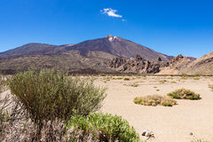 Landscape on the canarian island Tenerife Royalty Free Stock Photos