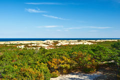Landscape at Cape Cod Royalty Free Stock Photos