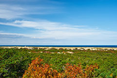 Landscape at Cape Cod Royalty Free Stock Images