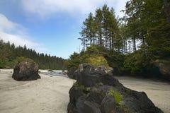 Landscape in Cape Scott Park. Vancouver. Canada Stock Images