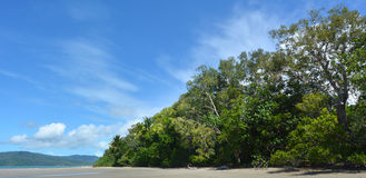 Landscape of Cape Tribulation in Daintree National Park Queensla Royalty Free Stock Photo