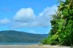 Landscape of Cape Tribulation in Daintree National Park Queensla Royalty Free Stock Photography