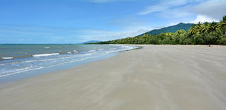 Landscape of Cape Tribulation in Daintree National Park Queensla Royalty Free Stock Image