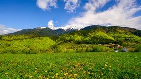 Landscape on Carpathian mountain in the spring time , Romania Transylvania.  stock photo