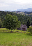 Landscape in the Carpathian mountains Stock Images