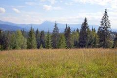Landscape in the Carpathian mountains Stock Photos