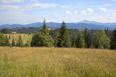 Landscape in the Carpathian mountains Stock Photography