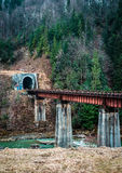Landscape in Carpathian mountains with river and railway bridge Stock Images