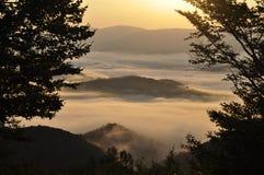 Landscape in Carpathian (Ukraine). Sunrising morning in Carpathian mountains Royalty Free Stock Photo