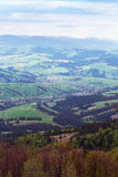 Landscape of a Carpathians mountains with fir-tree and grassy va Royalty Free Stock Photo