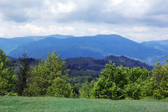 Landscape of a Carpathians mountains with green trees and fir-tr Stock Images