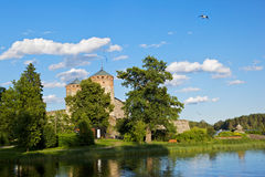 Landscape with the castle. Royalty Free Stock Image