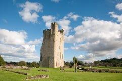 Landscape of the castle Stock Images