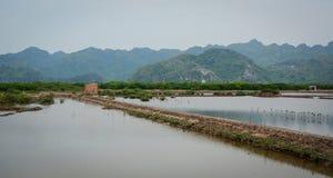 Landscape of Cat Ba Island in North of Vietnam Stock Photo