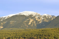 Landscape of the Catalan Pyrenees, Cerdanya, Girona, Spain. Beautiful snowy mountains and green pines valley in the Catalan Pyrenees. Image taken in Baltarga Royalty Free Stock Image