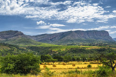 Landscape in Catalunya. Summer landscape in Catalunya (Spain) between Sort and Tremp royalty free stock photo