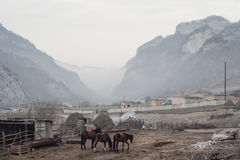 Landscape of the Caucasian mountain village with farm, horses and hay, settlement, in the gorge during the fog in gray Royalty Free Stock Photos