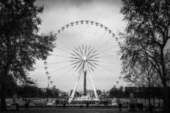 Landscape from the central aisle of the Tuileries Garden on the Ferris wheel of the Place of the Concorde in black and black in stock image