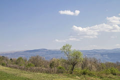 Landscape in Central Istria. The countryside of Istria with its idyllic landscape is a paradise for hikers and mountain bikers royalty free stock images