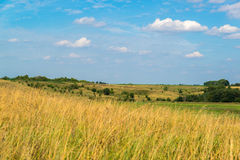 Landscape in central Russia in August. Front focus Stock Image