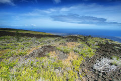 Landscape in chain of craters road. Of vegetation and recent lava flows,  Big island, Hawaii Stock Image