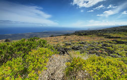 Landscape in chain of craters road. Of vegetation and recent lava flows,  Big island, Hawaii Royalty Free Stock Photos