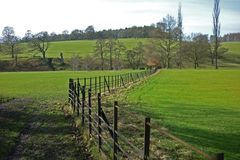 Landscape, Chatsworth Park, Baslow, Peak District, Derbyshire, Royalty Free Stock Photography