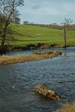 Landscape, Chatsworth Park, River Derwent, Peak District, Derbyshire, Stock Image