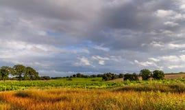 Landscape cheshire England Stock Image