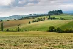 Landscape in Chianti region in province of Siena. Tuscany. Italy. Landscape in Chianti region in province of Siena. Tuscany landscape. Italy royalty free stock images