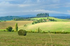 Landscape in Chianti region in province of Siena. Tuscany. Italy royalty free stock image
