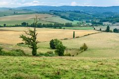 Landscape in Chianti region in province of Siena. Tuscany. Italy stock image