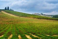 Landscape in Chianti region in province of Siena. Tuscany. Italy. Landscape in Chianti region in province of Siena. Tuscany landscape. Italy stock photography