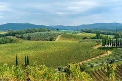 Landscape in Chianti region in province of Siena. Tuscany. Italy. Landscape in Chianti region in province of Siena. Tuscany landscape. Italy royalty free stock photos