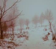 Landscape children go sledding Stock Photography