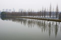 Landscape of chinese park. Royalty Free Stock Image