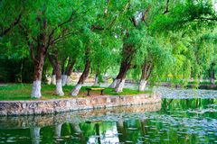 Landscape of Chinese park. Kunming city. China. Stock Photography