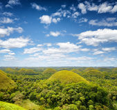 Chocolate hills on Bohol Island, Philippines Royalty Free Stock Photo